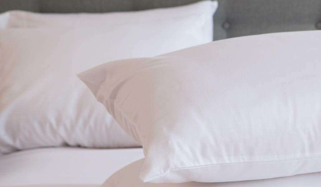 100% Natural Shredded Latex Pillow Covered in Organic Cotton