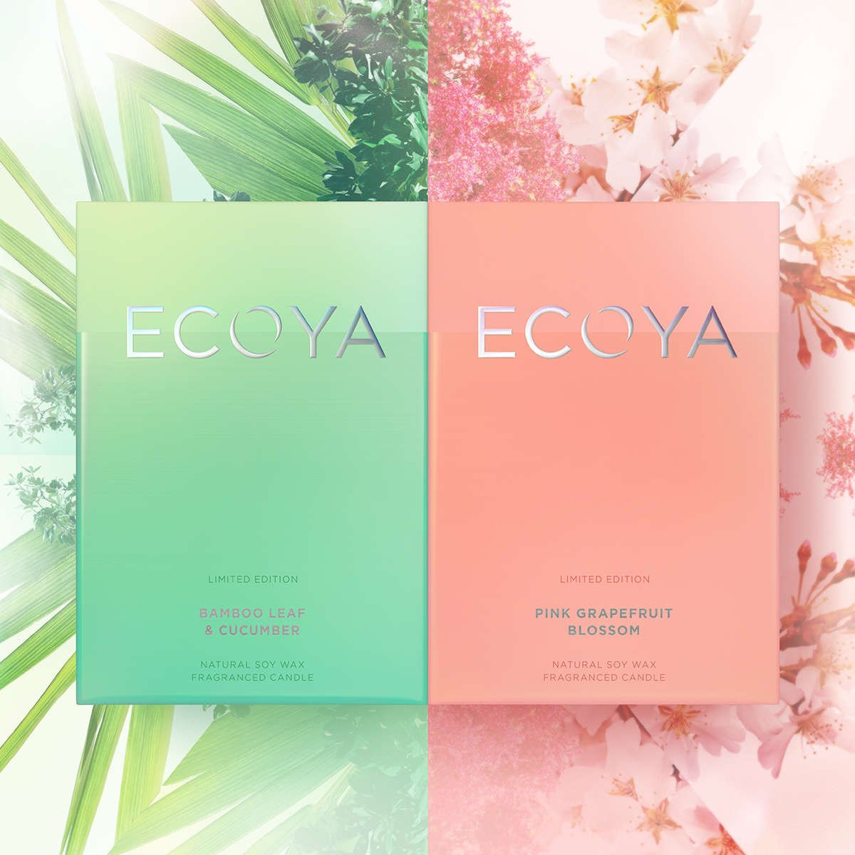 ECOYA Home Fragrance