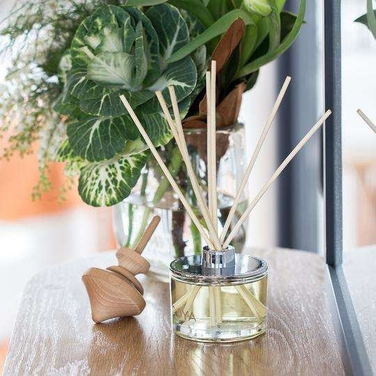 ECOYA fragranced reed diffuser on a table top