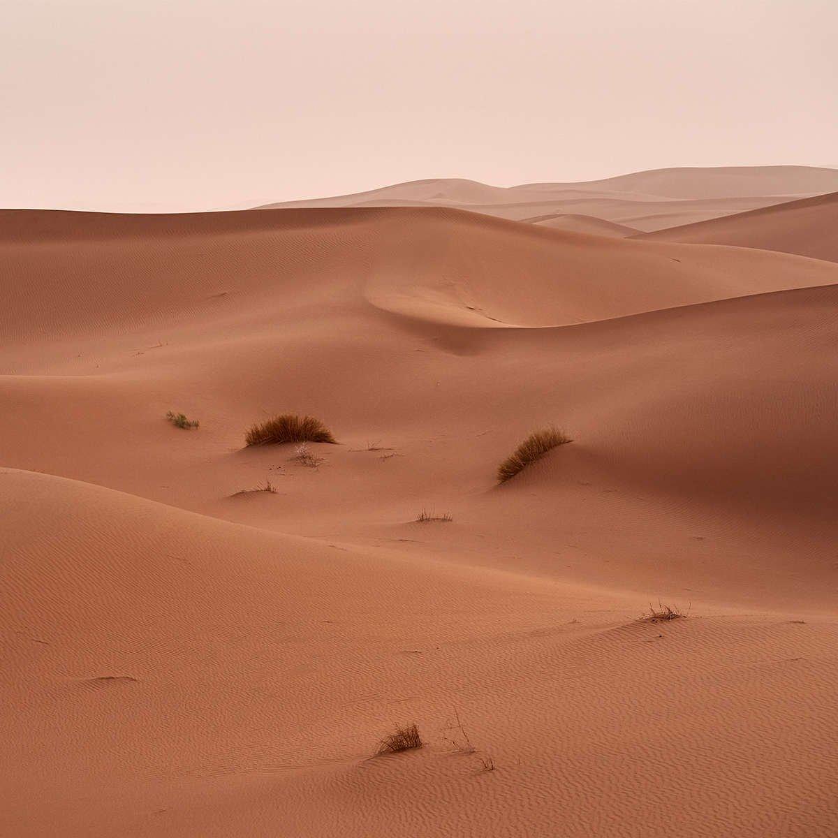 Desert landscape in Australia