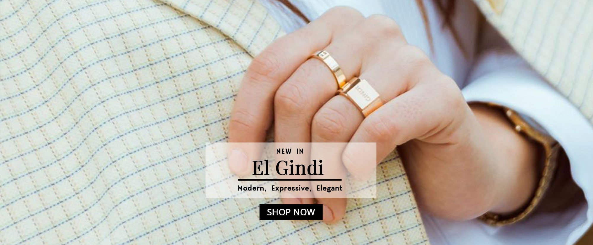 El Gindi