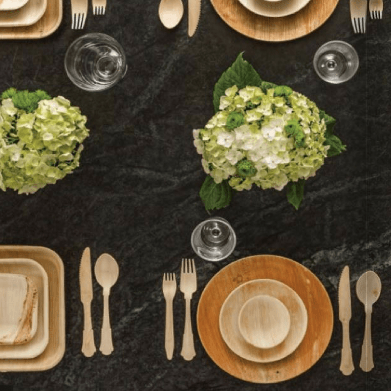 earth friendly dinnerware for weddings and parties, palm leaf plates
