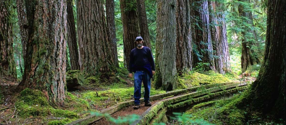 Fungi Perfecti founder, Paul Stamets, walks through a forest