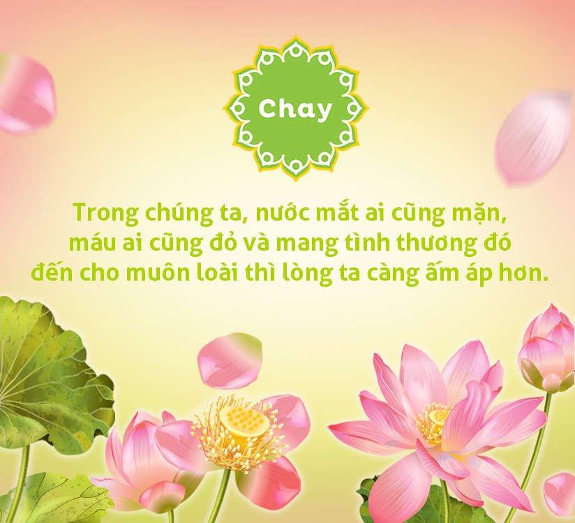 an chay truong thang 7 vu lan bao hieu