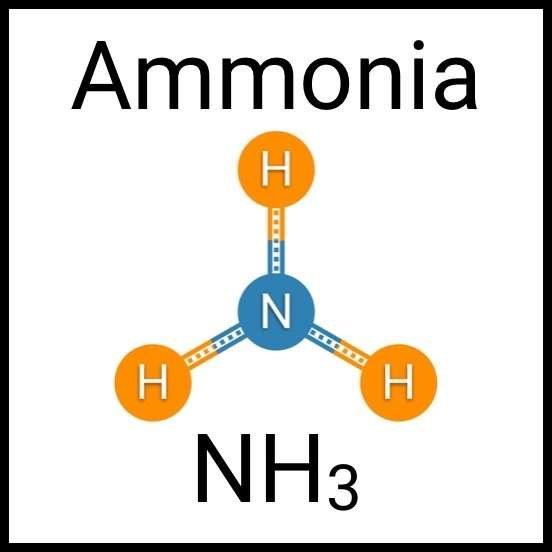 Ammonia | Aqua Lab Aquaria
