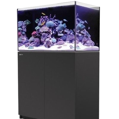 Red Sea Reefer Aquarium | Aqua Lab Aquaria