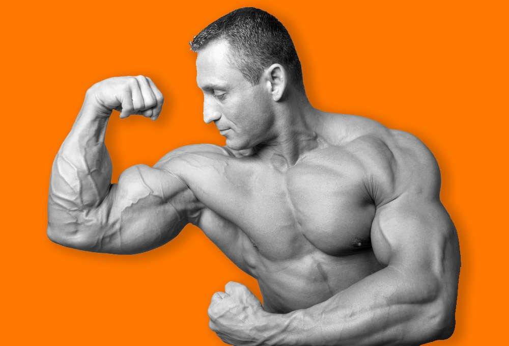 Get big_mass gainer supplement by da nutrition