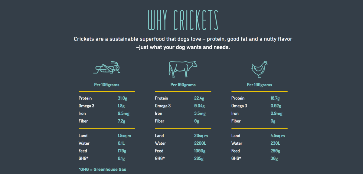 Cricket Dog Treats more Sustainable