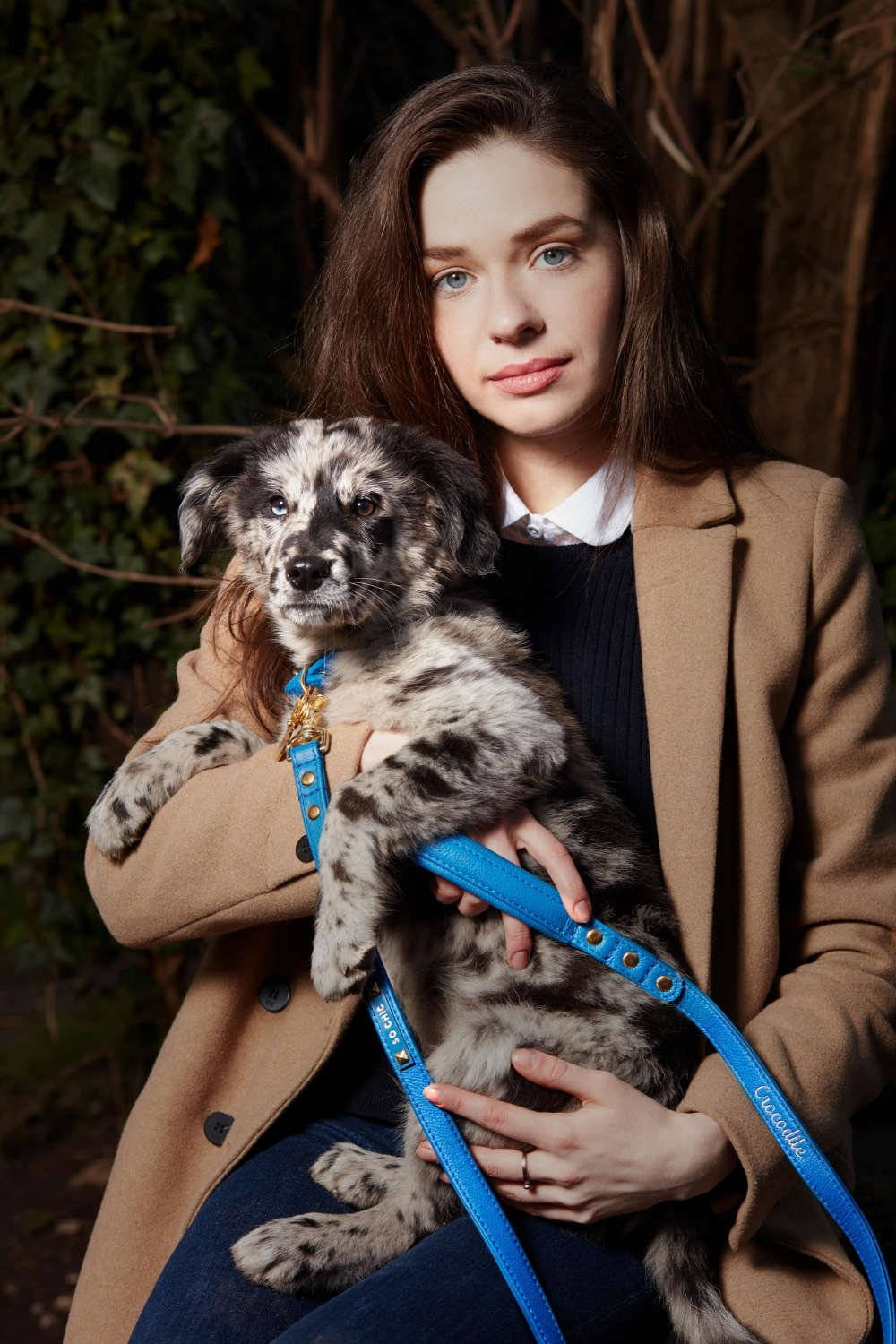 luxury quality dog accessories, made In France