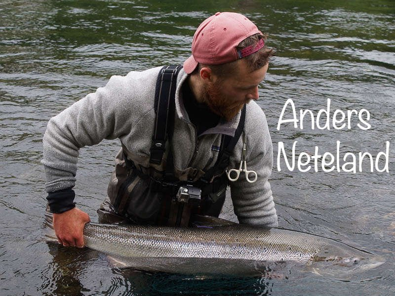anders neteland netaland production salmon