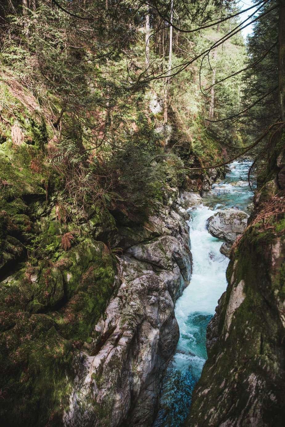 börselva silfar canyon clean water