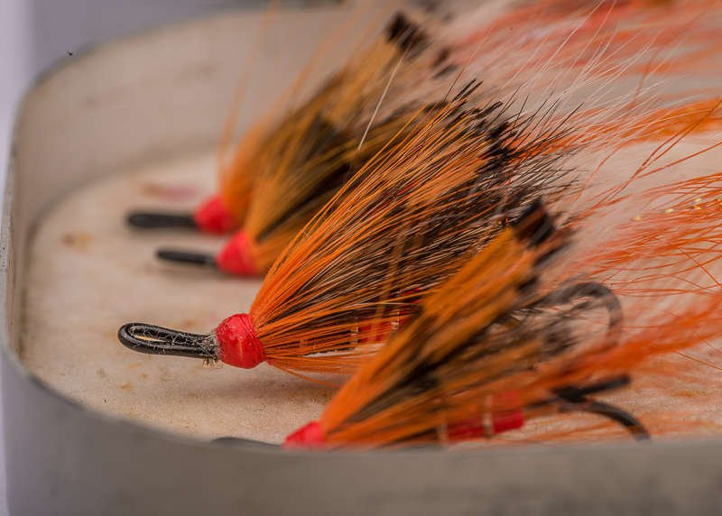 top salmon flies ally's shrimp
