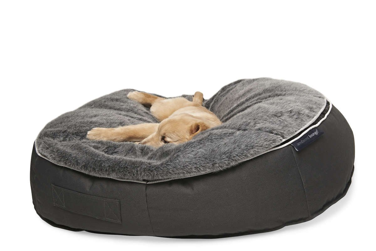 Picture of: Luxury Dog Beds Ambient Lounge Uk