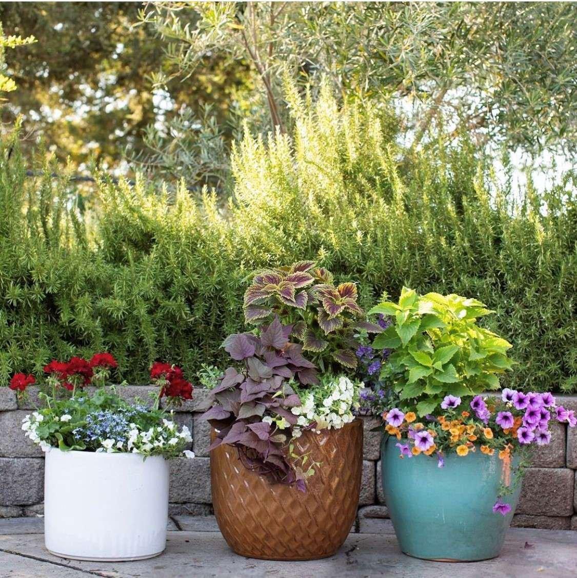 Porch Pots display