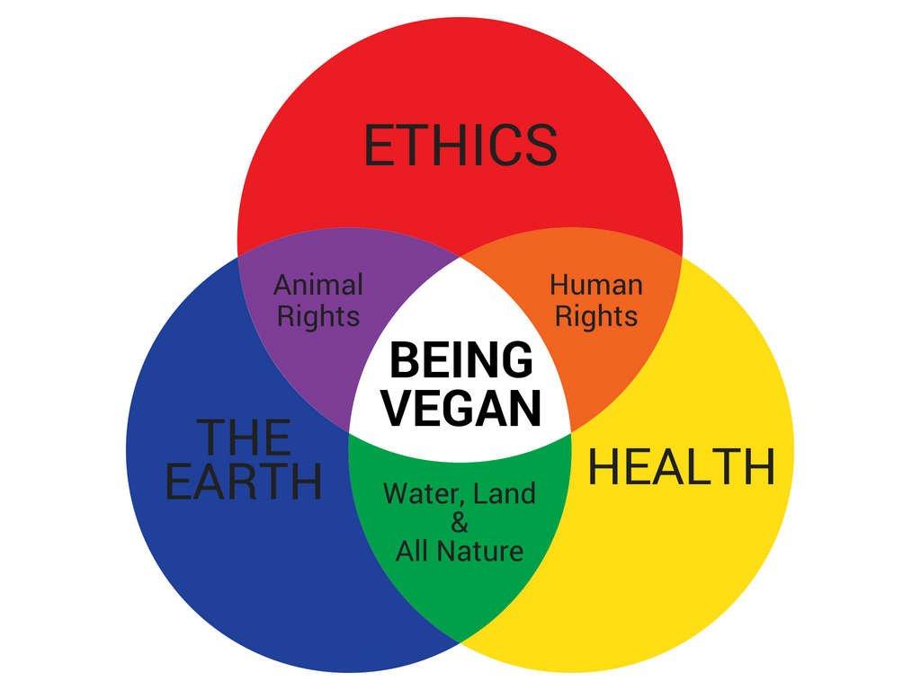 is water vegan