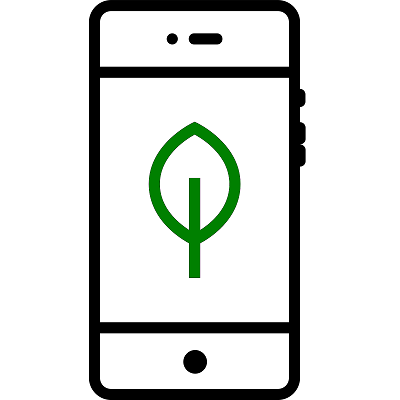 A smartphone with a young sapling on the screen