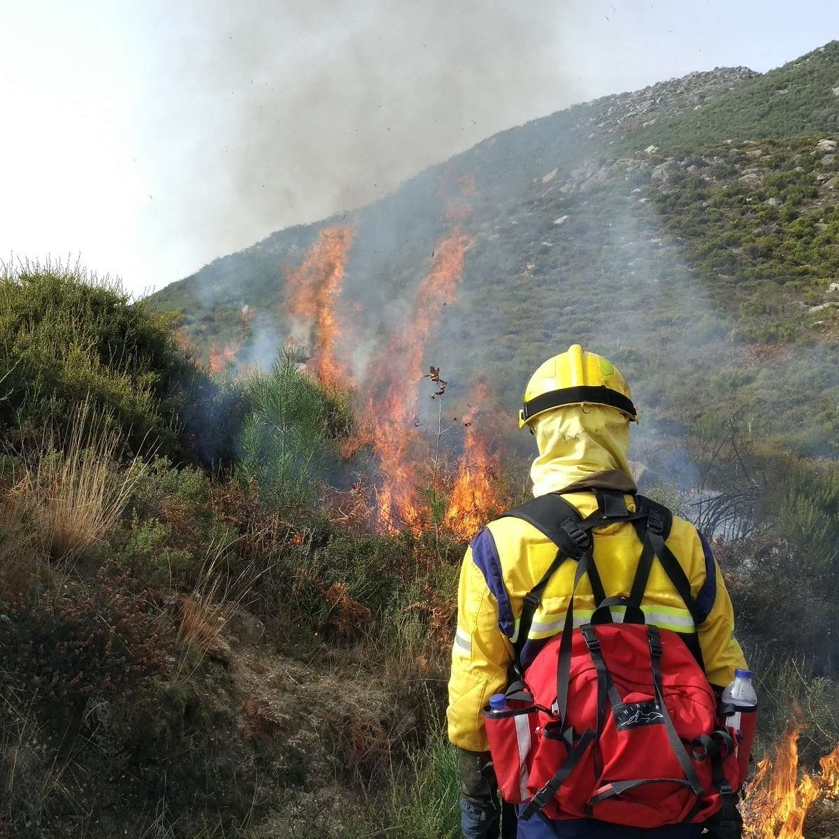A fireman oversees a controlled fire