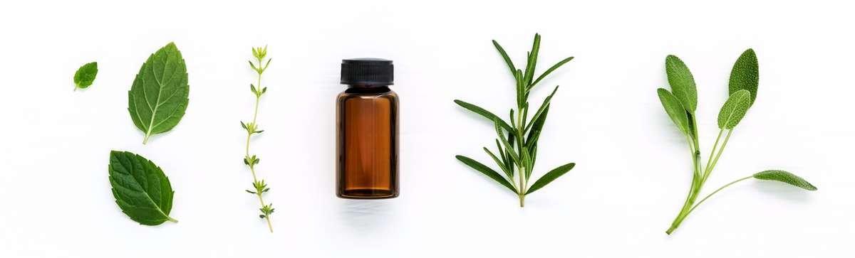 aromatherapy oils and fragrance oils bulk buy