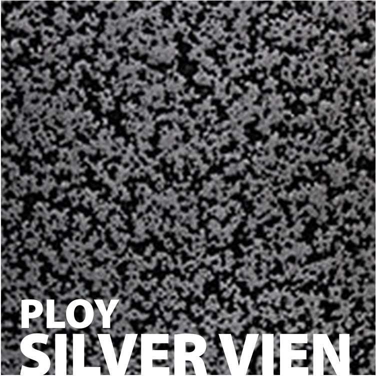 Ploy Silver Vien